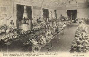 mauritius maurice, CUREPIPE, Town Hall, Flower Exhibition (1909) Postcard
