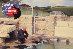 Isolation Pool Feeding Training Time Cornish Seal Sanctuary Postcard