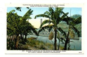Panama - Canal Zone. Banana Plantation, Battleship Passing