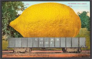 Giant Lemon on Southern Pacific Railroad Exaggeration Postcard 1910