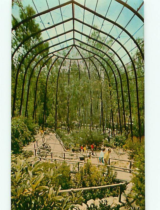 Vintage Post Card San Diego Zoo Aviary Birds CA  # 4894