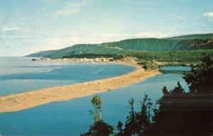 Gaspe' Peninsula, P.Q. Postcard
