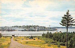 Lubec Maine Campobello Island Scenic View Vintage Postcard JA4741432