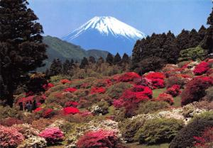 Postcard Snow topped Mount Fuji in early Spring, Japan #J