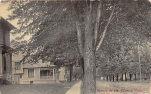 Fayette Ohio~Spring Street Scene~Houses along Unpaved Street~Tall Trees~c1910 Pc