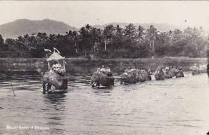 Ceylon Sri Lanka Elephants Crossing River Real Photo