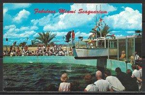 Florida, Miami - Seaquarium - [FL-369]
