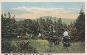 NORTH CAROLINA, 1910s; Down the Trail from Mt. Mitchell, People on Horseback