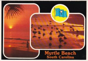 South Carolina Myrtle Beach Beach Scenes
