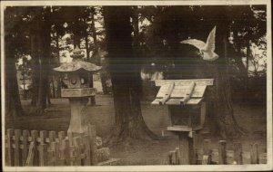 Japan Bird Houses Birdhouses c1910 Postcard