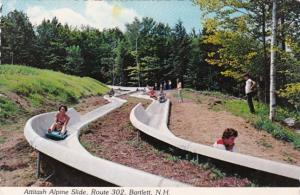New Hampshire Attitash Alpine Slide Route 302