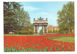 Italy Milan Arco della Pace Arch of Peace Tulip 4X6 Postcard