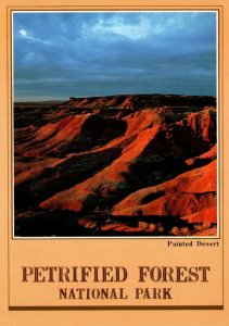 Arizona Petrified Forest National Park The Painted Desert