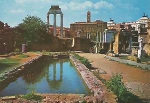 Postal 50103: ROMA - Foro romano
