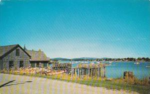 Maine Lobster Shack And Traps