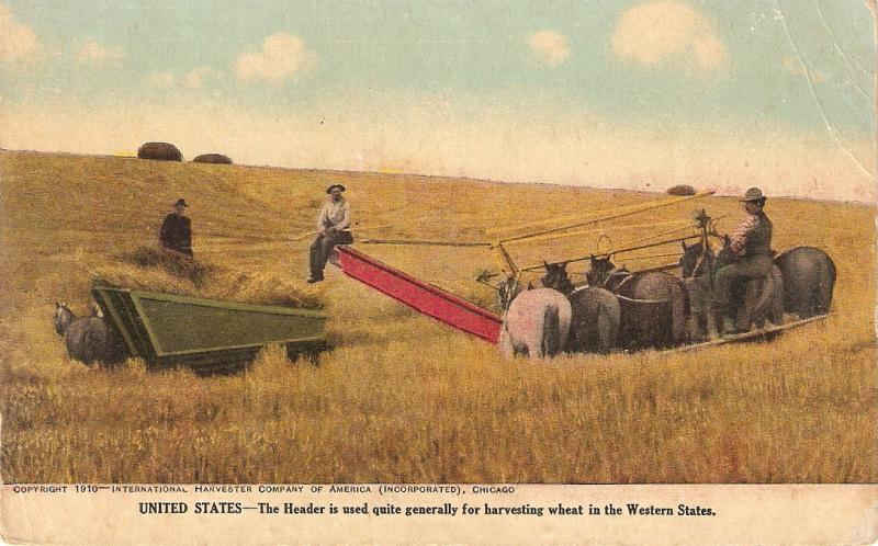 Horses Header harvesting in Western USA Antique American PC