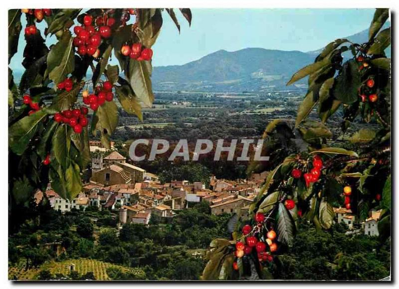 Modern Postcard Ceret City considered for its cherries View