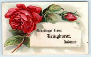 Greetings from BRINGHURST, IN Indiana ~  ROSES  1909 Carroll County  Postcard
