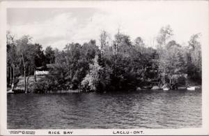 Rice Bay Laclu ON Ontario c1948 Vintage Real Photo Postcard E30
