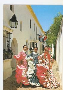 Postal 049554 : Malaga. Catedral y Hotel Malaga Palacio