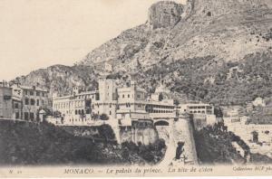 MONACO, PU-1908; Le palais du prince. La tete de chien