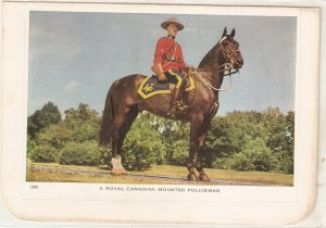 A Royal Canadian Mounted Policeman Nice Canadiand. PC Conmtinental siize