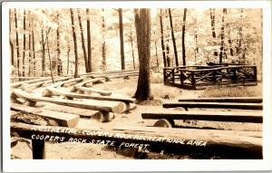 RPPC Amphitheatre Coopers Rock Recreational Area State Forest WV Postcard Q02