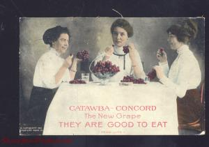 LITTLE SILVER NEW JERSEY CATAWBA CONCORD GRAPE ADVERTISING POSTCARD