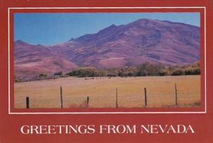 Nevada Greetings From Showing Mountain and Meadows Scene