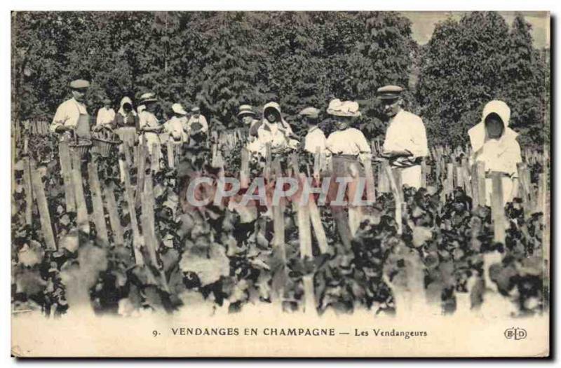 Vintage Postcard Folklore Vine Grape harvest Champagne the v