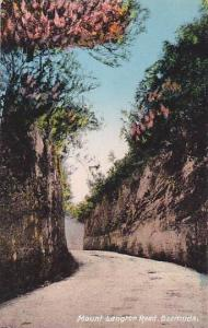 Mount Langton Road, Bermuda, 00-10s