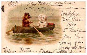 Dog ,  dog rowing a boat