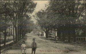 Saugerties NY Market St. c1910 Postcard