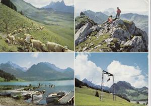 Switzerland, Suisse, Schwarzsee, Lac Noir, 1973 used Postcard