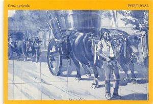 Portugal Cena Agricola Bulls Postcard