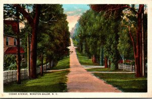 North Carolina Winston Salem Cedar Avenue Curteich