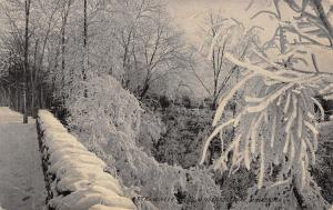 Minneapolis MN Winter~Frosted Trees~Snow-Covered Fence Line~Minnehaha Park 1914