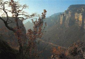 France Gorges de la Jonte Lozere Causse Noir Panorama Landscape Postcard