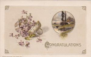 Congradulations, Basket with Violet flowers, Country Scene, gold details, PU-...