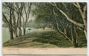 The Promenade Boksburg Lake Germiston South Africa 1908 postcard
