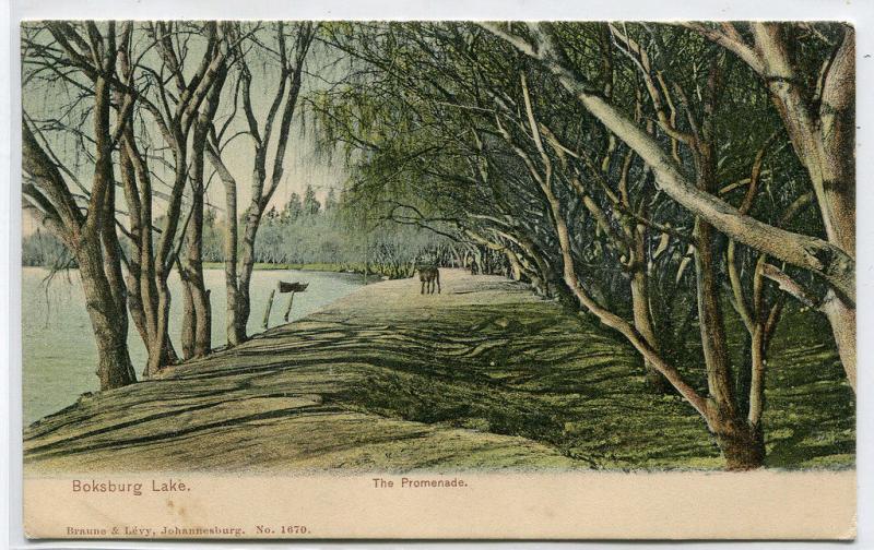 The Promenade Boksburg Lake Germiston South Africa 1908 postcard