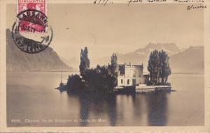 Switzerland Clarens Ile de Salagnon et Dents du Midi 1911