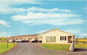 Willow Street Pennsylvania~Willow Valley Motor Inn~1950s Roadside Postcard