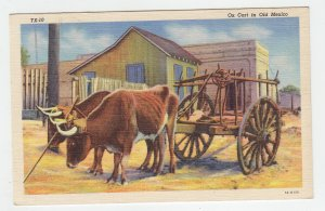 P2079, old postcard ox & cart in old mexico unused