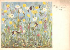 Bergwiesenblumen, Fleurs des pres 1934 Flowers