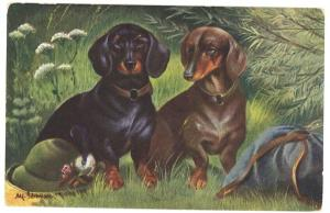 Dachshund Two Dogs Hat Duufle Bag German America Novelty Postcard