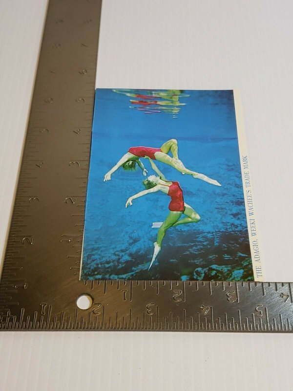 Postcard Florida Mermaid performers water ballet Wekki Wachee Two Sided   433