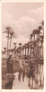 Cairo Egypt, Egypte, Africa Village near Ghizeh, Smaller size postcard then n...