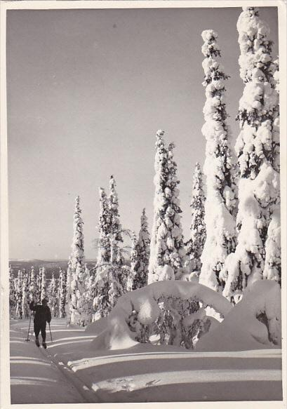 Finland Winter Scene Ounasvaara of Lapland