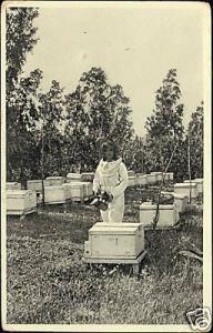 israel BOROCHOV Giv'atayim Jewish Beekeeper 30s JUDAICA